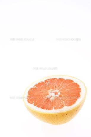 グレープフルーツの素材 [FYI00470415]