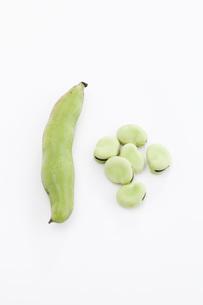 そら豆の素材 [FYI00470418]