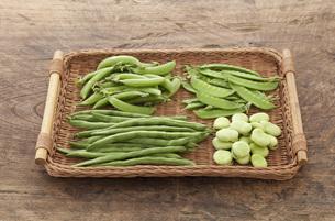 ザルにのった夏の豆の写真素材 [FYI00470420]