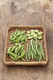 ザルにのった夏の豆の素材 [FYI00470424]