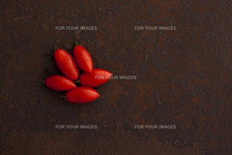 錆びたブリキ板の上のシシリアンルージュの写真素材 [FYI00470514]