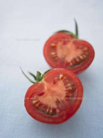 半分にカットされたトマトの写真素材 [FYI00470521]
