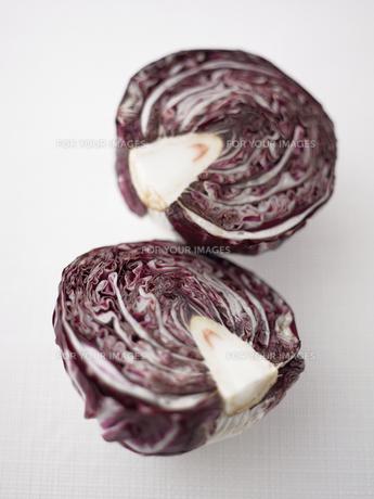 半分にカットされた紫キャベツの写真素材 [FYI00470528]
