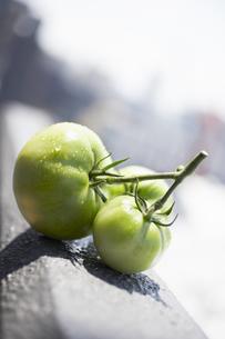 コンクリートの上の緑のトマトの素材 [FYI00470534]
