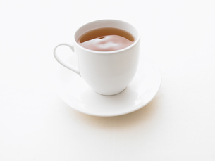 紅茶の写真素材 [FYI00470579]