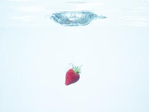 水に落ちたイチゴの写真素材 [FYI00470613]
