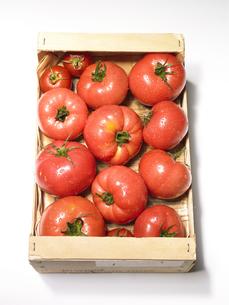 ダンボールの中のトマトの素材 [FYI00470626]