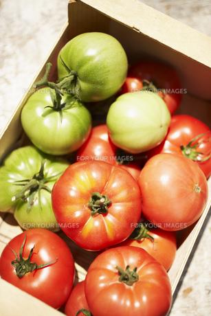 木箱の中のトマトの素材 [FYI00470627]