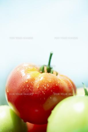 水滴のついたトマトの素材 [FYI00470642]