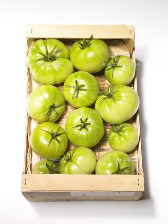 ダンボールの中のトマトの素材 [FYI00470644]