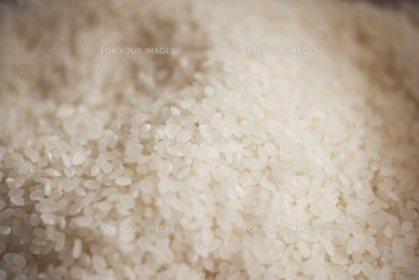 米粒の素材 [FYI00470648]
