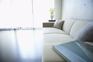 光が射すリビングとソファーの写真素材 [FYI00470716]
