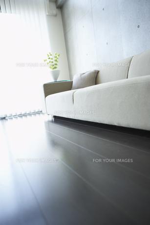 光が射すリビングとソファーの写真素材 [FYI00470722]