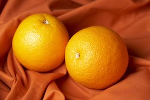 布の上に置いたオレンジの素材 [FYI00470739]