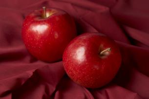 赤い布の上に置いたりんごの写真素材 [FYI00470766]