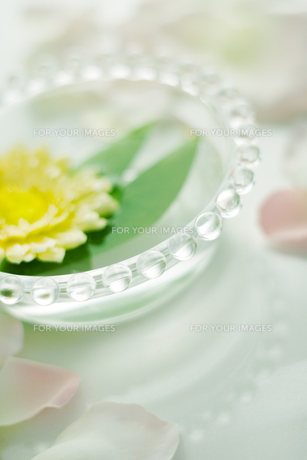 ガラスボウルに浮かぶ花と葉の写真素材 [FYI00471016]