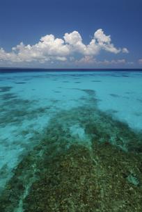 宮古島の海の写真素材 [FYI00471091]