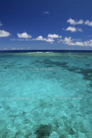 宮古島の海の写真素材 [FYI00471110]