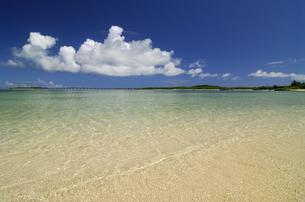 海 西の浜の写真素材 [FYI00471122]