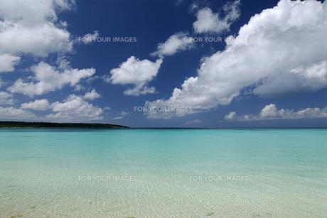 海 前浜ビーチの写真素材 [FYI00471135]
