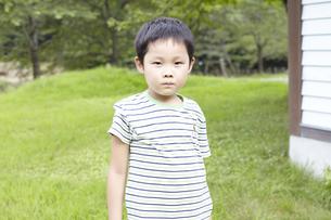 草原に立つ男の子の写真素材 [FYI00471198]