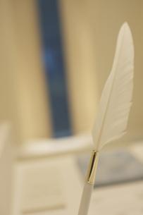 白い羽ペンの写真素材 [FYI00471211]