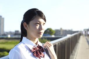 青空の下歩道から遠くを見つめる女子高生の写真素材 [FYI00471333]