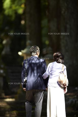 神社の境内の階段を上がる腕を組んだシニア夫婦の後姿の写真素材 [FYI00471339]