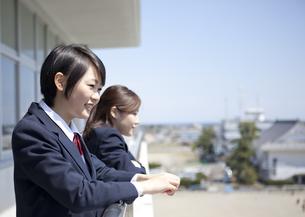 校庭を眺める女子高校生の写真素材 [FYI00471387]