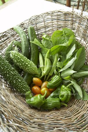カゴに入った夏野菜の素材 [FYI00471479]