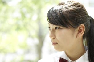 教室の窓際の女子高生の横顔の写真素材 [FYI00471634]