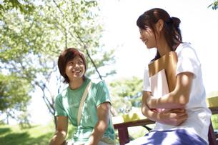 大学のキャンパスの木陰のベンチで話をする男女の大学生の写真素材 [FYI00471740]