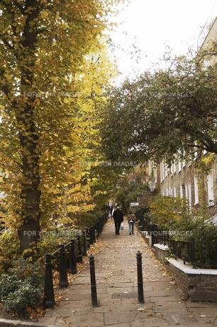 秋のハムステッドの写真素材 [FYI00471811]