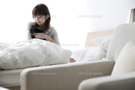 ベットでくつろぐ女性と犬の写真素材 [FYI00471956]