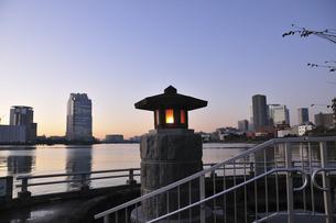 中之島公園より望む豊洲・晴海方面の写真素材 [FYI00472187]