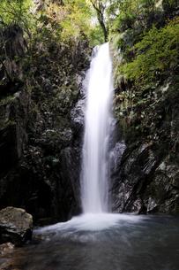 どっこの滝の写真素材 [FYI00472333]