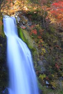 秋の尾ノ島の滝の写真素材 [FYI00472436]