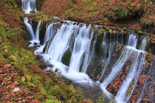 秋の白糸の滝の写真素材 [FYI00472437]