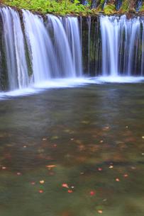 秋の白糸の滝の写真素材 [FYI00472443]