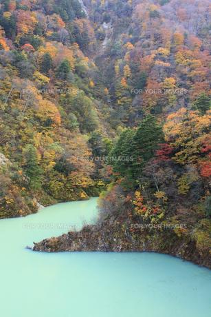 秋の高瀬渓谷の写真素材 [FYI00472448]