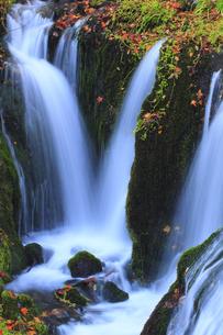 秋の白糸の滝の写真素材 [FYI00472449]