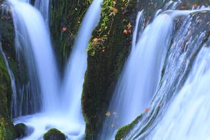 秋の白糸の滝の写真素材 [FYI00472460]