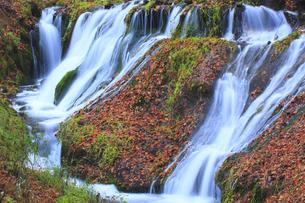 秋の白糸の滝の写真素材 [FYI00472461]