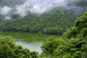 山霧立つ天竜川の写真素材 [FYI00472486]