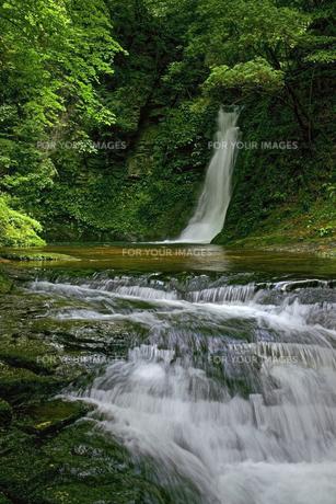 琵琶滝 赤目四十八滝渓谷の写真素材 [FYI00472501]