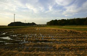 刈り田の写真素材 [FYI00472521]