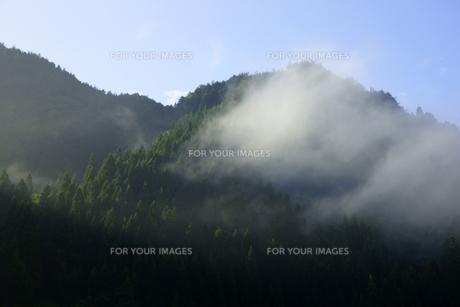 山霧の写真素材 [FYI00472526]