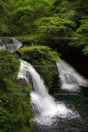 荷担滝 赤目四十八滝渓谷の写真素材 [FYI00472560]
