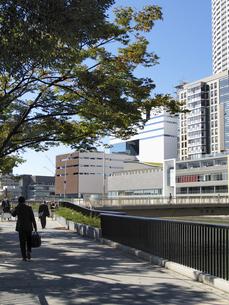 堂島川南側の遊歩道と堂島リバーフォーラムの写真素材 [FYI00473718]