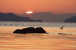 朝の海 日の出の写真素材 [FYI00473825]